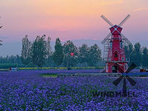 新疆哈密花海风车