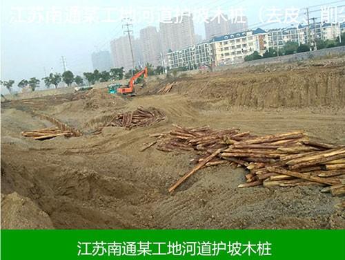 江苏南通某工地河道坡木桩