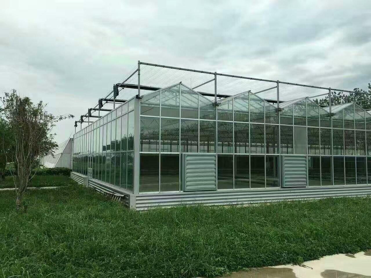玻璃温室生态餐厅景观绿化注意事项