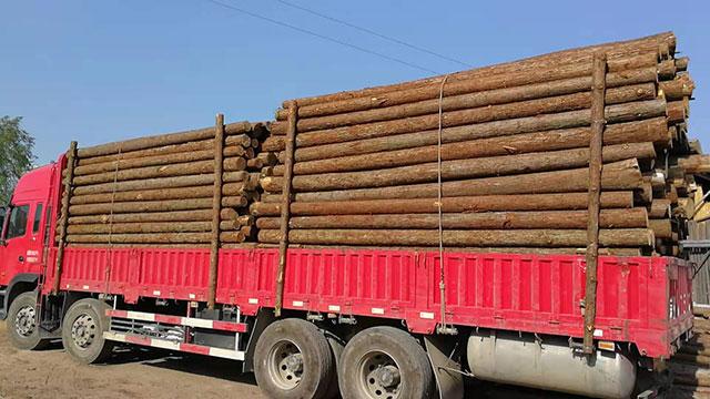 松木桩如何做防腐处理?