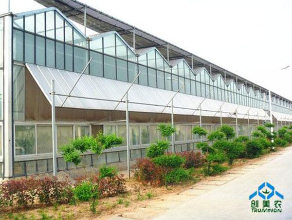 2006鄭州市蔬菜所溫室群