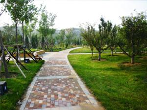 上海海木园林有限公司