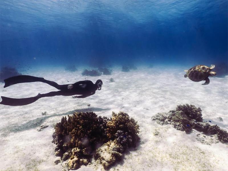 JK进阶开放水域自由潜水员课程
