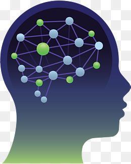 研究发现:疾病选择性地影响了大脑网络