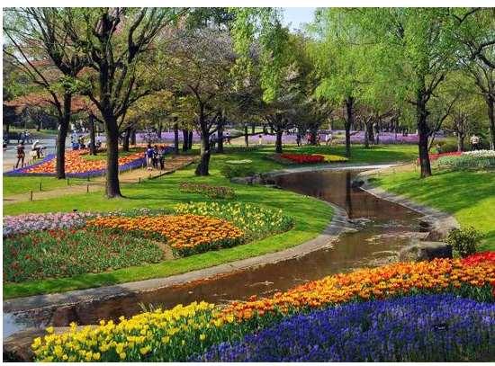 园林绿化须加强绿色植物病虫害的防治