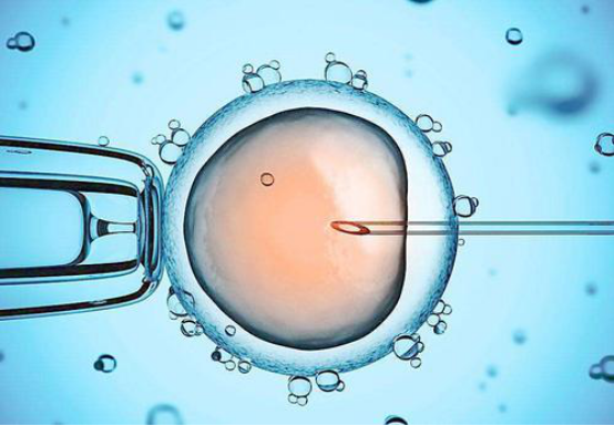 卵巢功能差想要怀孕,做试管婴儿可行吗?