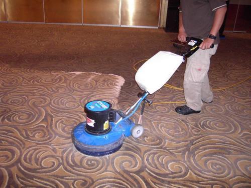 信达家政|地毯怎么清洗