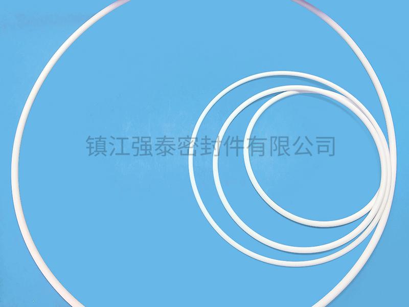 各种规格四氟O型圈