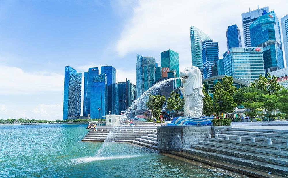 新加坡EP项目