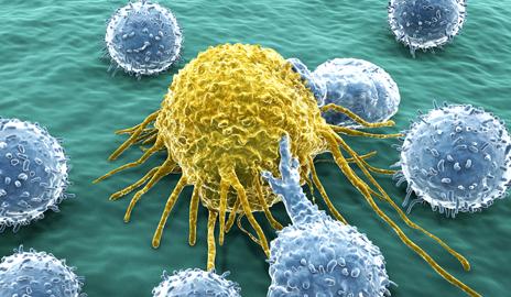 科学家发现癌细胞逃脱巨噬细胞吞噬的机制