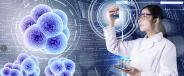 中国干细胞产业的未来之路在何方?