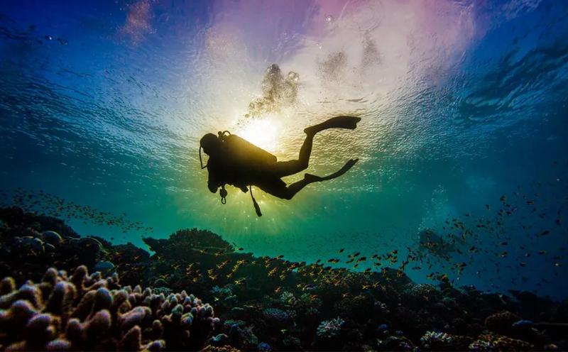 潜水的几种前所未有的好处