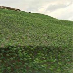 邊坡綠化爬藤網
