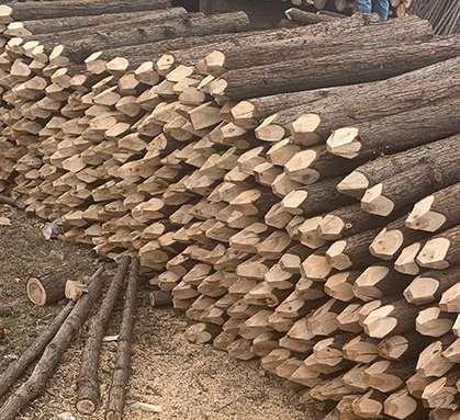 杉木桩的广泛使用标准介绍