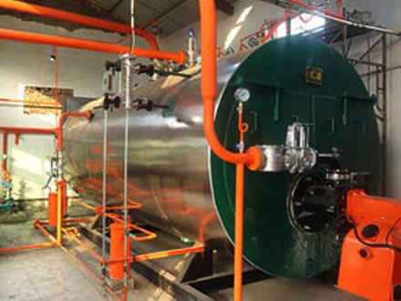 燃气蒸汽热水锅炉案例