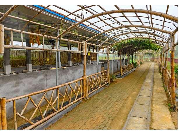 竹建筑工程应考虑的主要问题