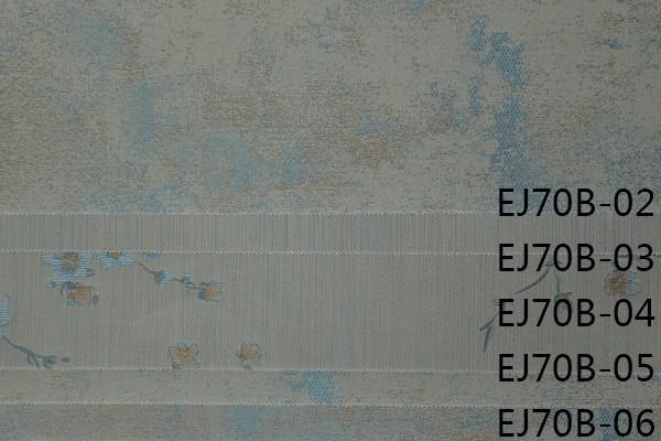 EJ70B-02~06