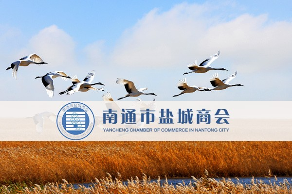 黄浦网站建设