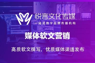 门户网站推广/软文营销