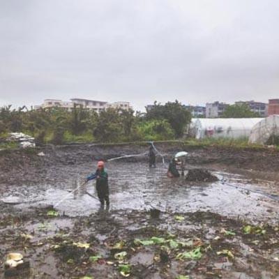 鸠江池塘清淤