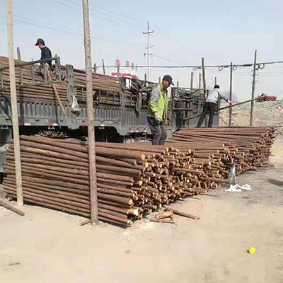 海东绿化植树支架公司