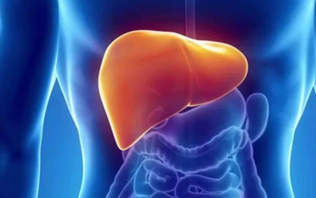 2020干细胞疗法对肝病的新进展!