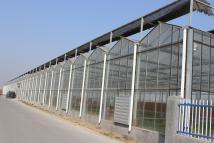 温室大棚建设对农业发展的影响?
