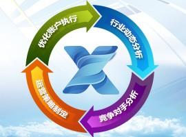 大型网站平台定制方案