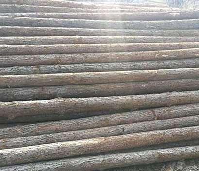 杉木桩的加工手段分析