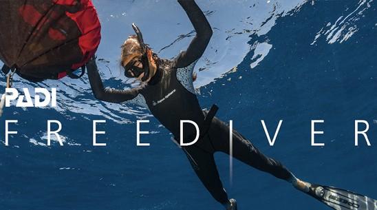 JK开放水域自由潜水员课程
