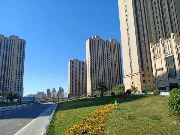 北京亚林西