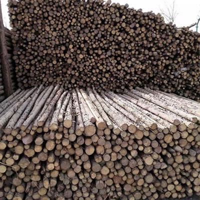 杉木杆如何存放?