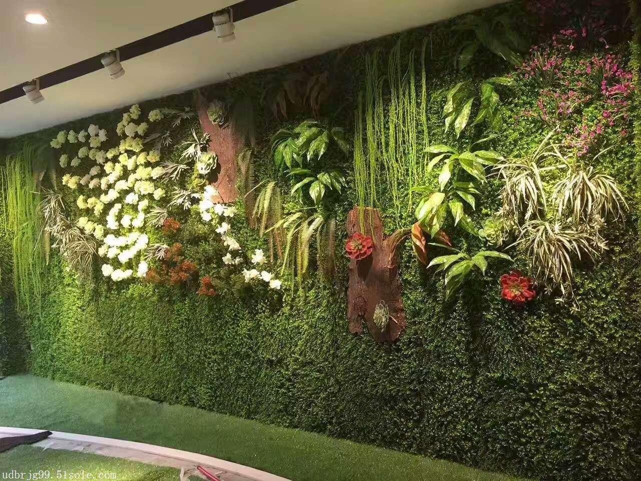 植物墙学习班