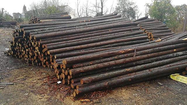 生态木桩批发