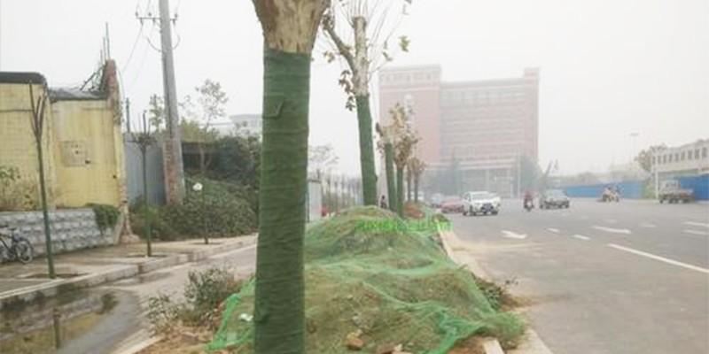 西宁园林保湿布 大树保温棉 树木保湿绷带