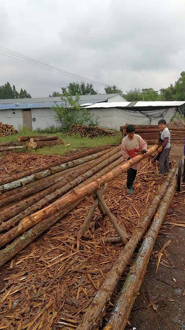 木桩加工厂