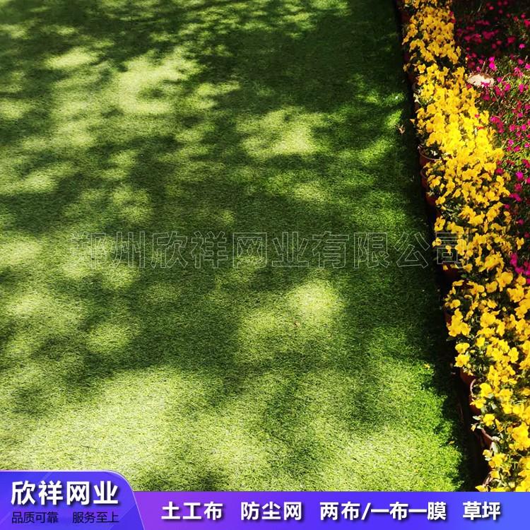 人造草坪的草高和密度如何选择?