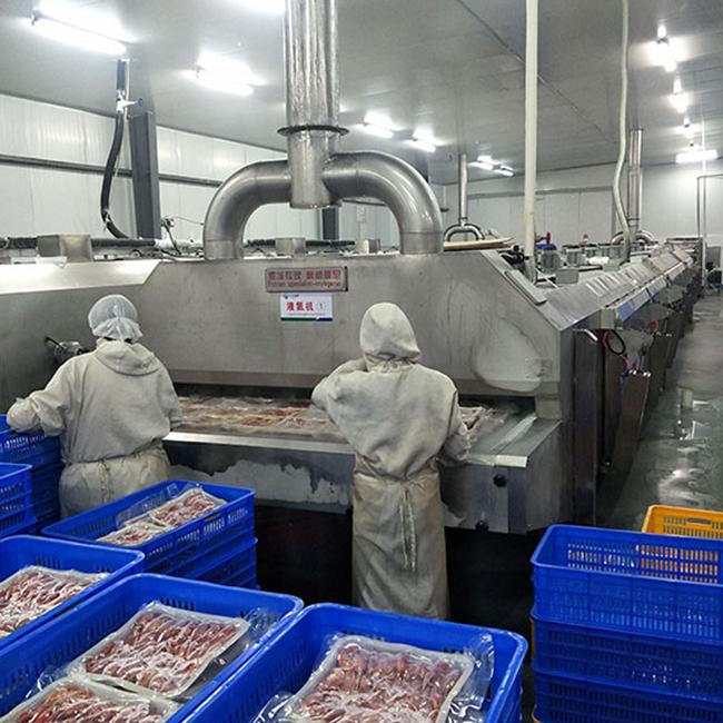 龙虾液氮速冻机