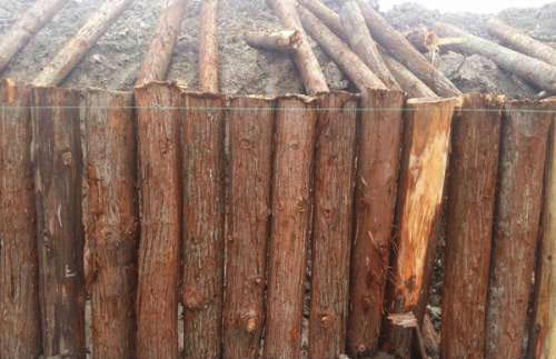 影响河道护坡木桩质量的因素