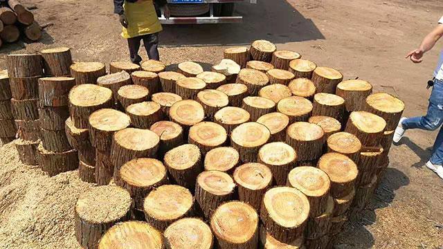 短木桩供应