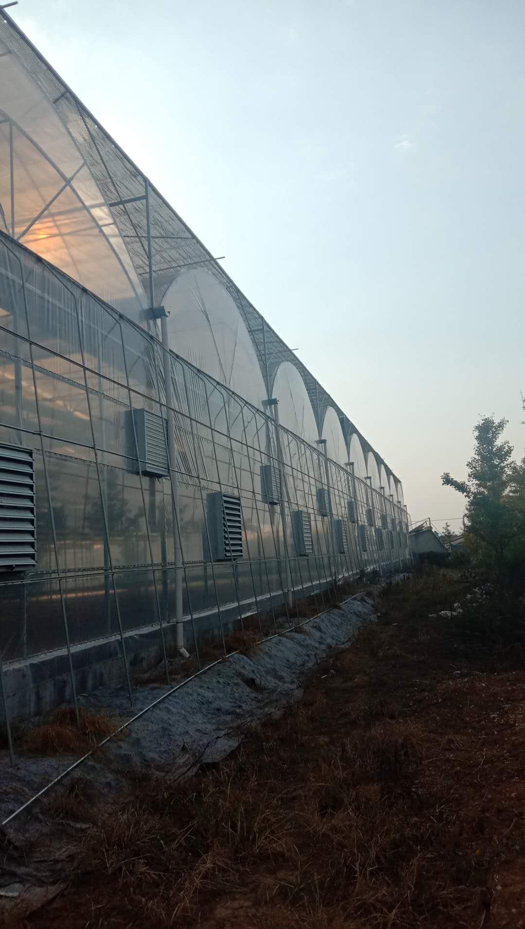 贵州省安龙县薄膜温室