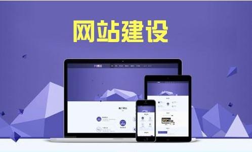 门户网站建设