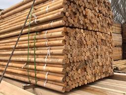 1米-2.5米木棒