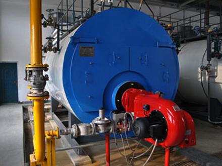生物质养殖锅炉案例