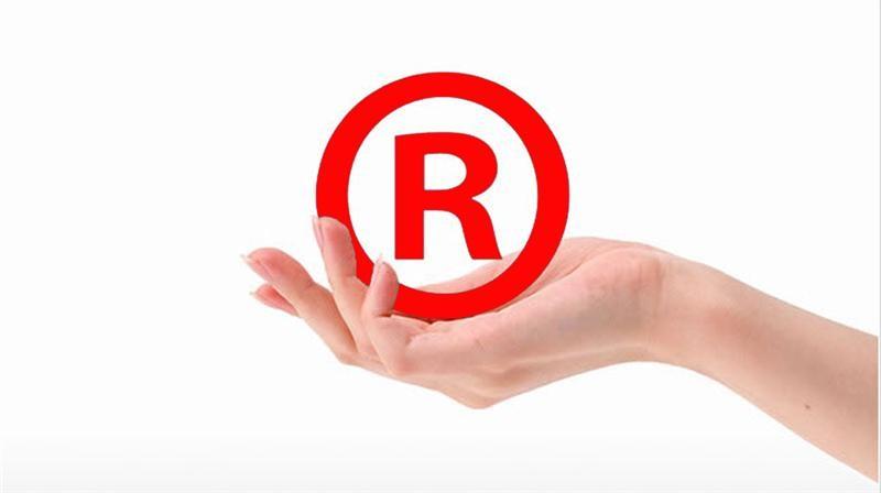 知识产权 : 用专业赢得客户 用服务感动客户