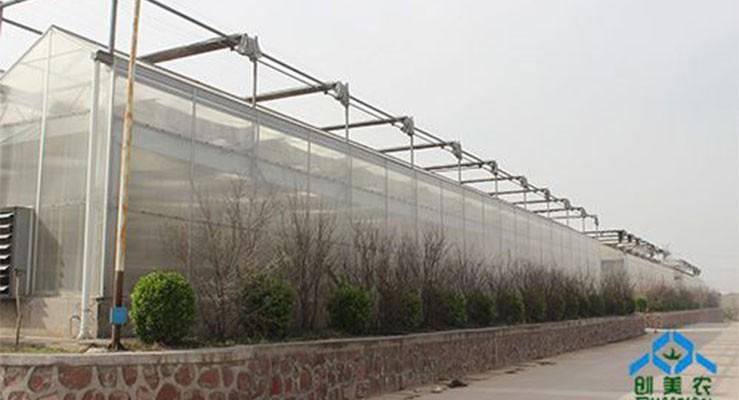 连栋智能阳光板温室