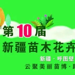 新疆苗博会:第十届新疆苗木花卉博览会将于9月28日云端开幕