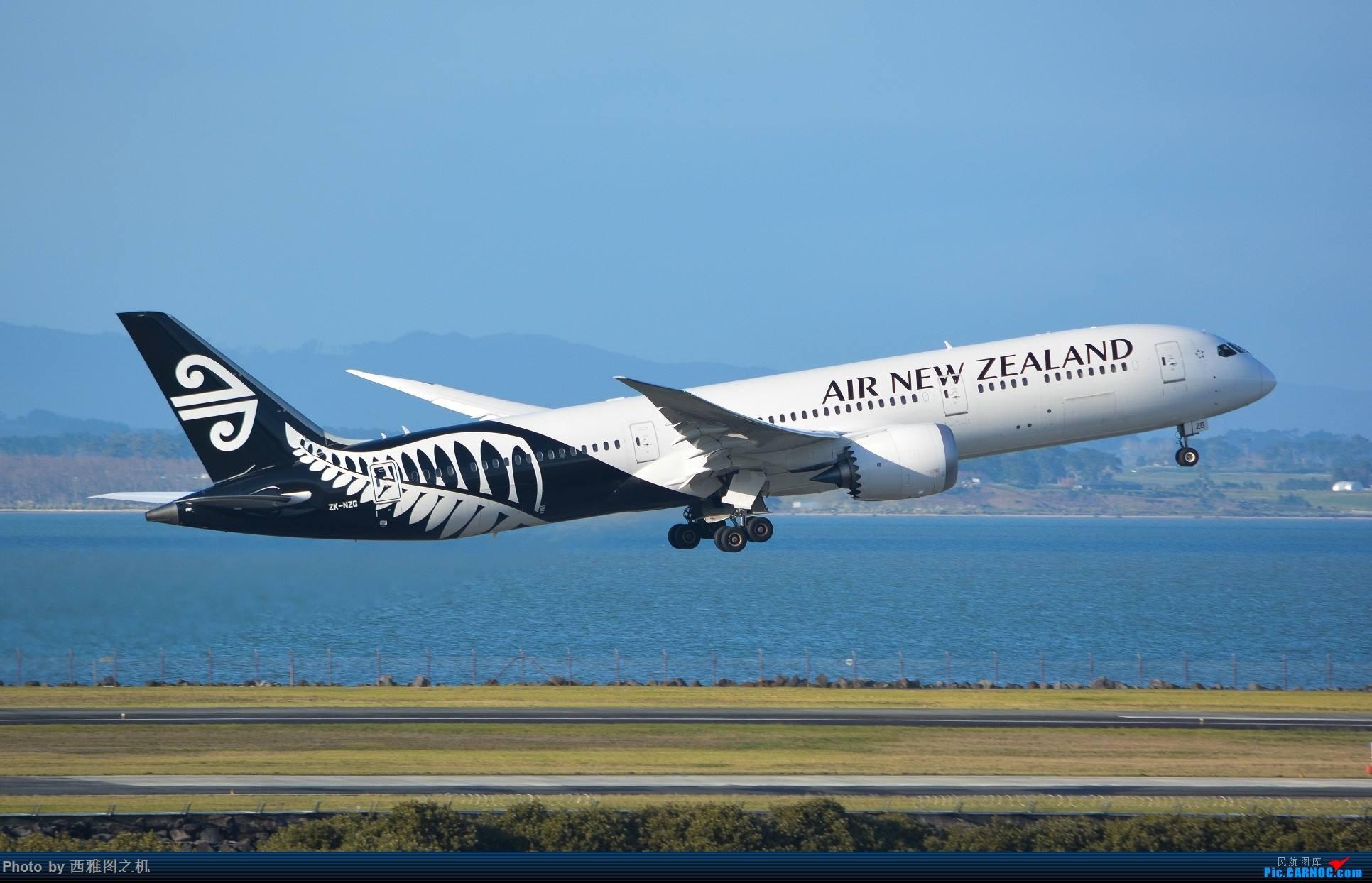 新西兰入境流程以及注意事项(一)