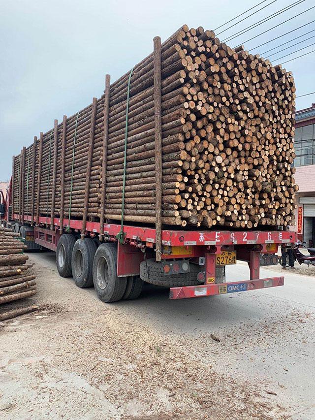 某企业采购杉原木装车发货