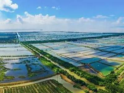 福州渔业养殖水质检测
